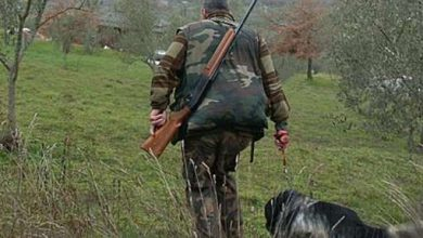 Photo of A Mantova il comune toglie il divieto di caccia