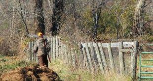deleghe caccia, il comportamento cacciatori