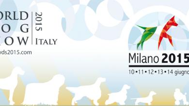 Photo of World Dog Show – Esposizione Mondiale Canina a Milano