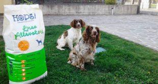 Hops Pet Food, una nuova linea di crocchette adatte anche ai cani da caccia