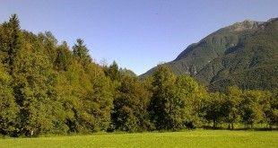 PFR del Friuli