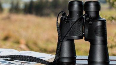 Photo of Attrezzatura per la caccia di selezione. Chi più spende, meno spende? – 2ª Parte