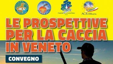 """Photo of Convegno """"Le prospettive per la caccia in Veneto"""" – 30 Aprile Vicenza"""