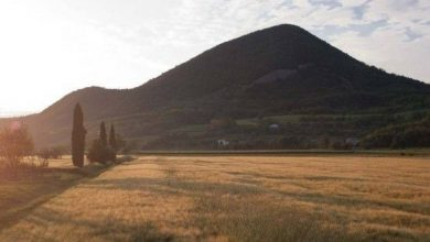 Photo of Parco Regionale dei Colli Euganei, incontro sul progetto di legge per la riperimetrazione