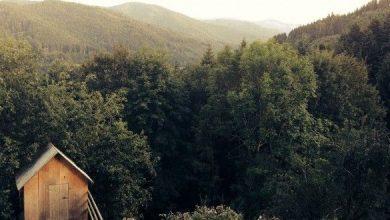 Photo of Aosta, spaccatura per la riforma sulla caccia
