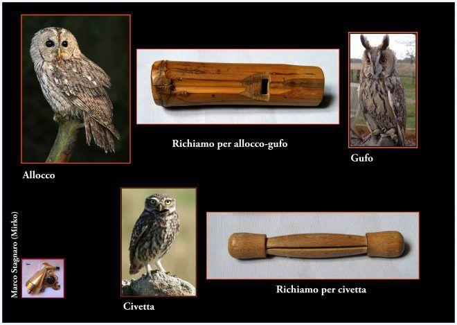 Schema Elettrico Richiamo Per Uccelli : Introduzione alla caccia con il chioccolo iocaccio