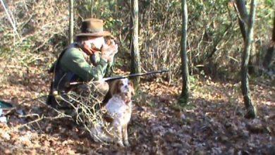 Photo of Introduzione alla caccia con il chioccolo