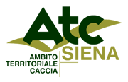 Logo ATC Siena