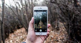 Cellulare a caccia