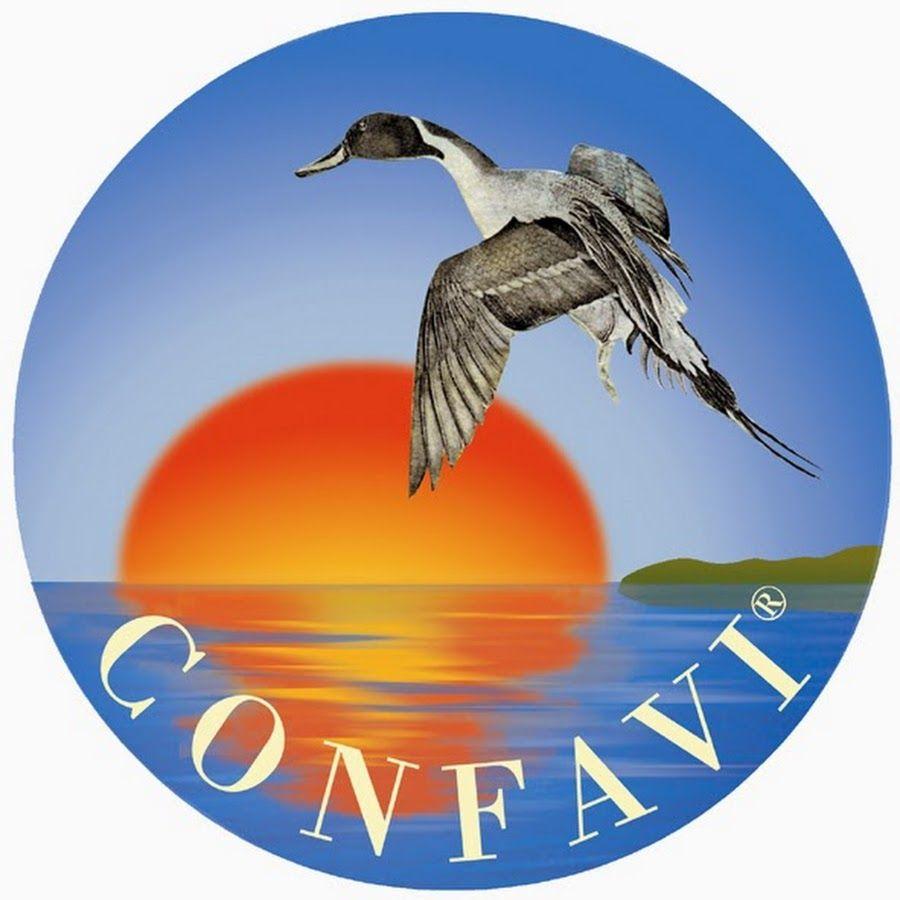 Logo Confavi