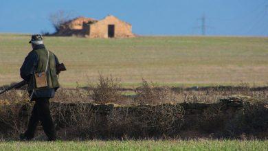 Osservazioni calendario venatorio Toscana legge sul disturbo venatorio