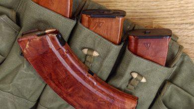 Photo of Modifica direttiva armi, IMCO approva. Critiche per la Comi