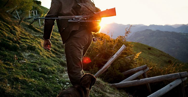 Photo of Il prelievo nella caccia di selezione: quando il selvatico se ne va