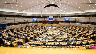 Photo of Elezioni europee 2019, la FACE presenta ai canditati un manifesto per la difesa della caccia