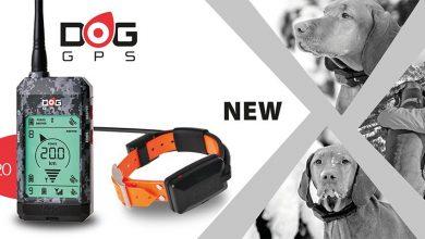Photo of Vi presentiamo il DogTrace GPS X20