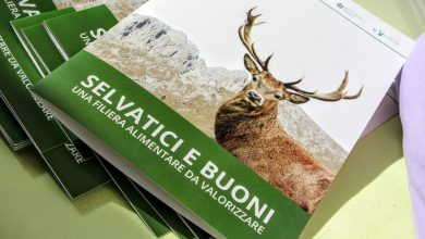 """Photo of """"Selvatici e Buoni"""", a Bergamo al via il progetto per valorizzare le carni di selvaggina"""
