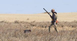 Vittime della caccia