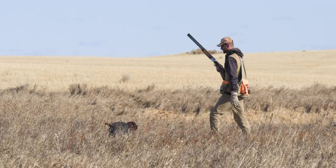 Vittime della caccia, a fine della stagione puntuali arrivano polemiche e falsità