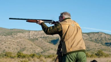 Photo of Piemonte, legge sulla caccia: FIdC invita i Cacciatori a presenziare in Consiglio