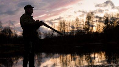 Veneto revocato il divieto di caccia divieto di caccia la domenica