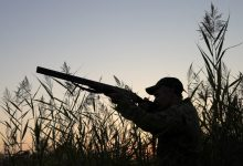 impugnata legge caccia piemonte