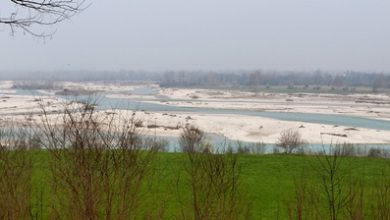 Photo of Sul fiume Piave istituita la seconda Area Wilderness del Veneto