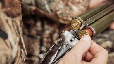 Photo of Trento nuove regole sulla caccia, soppresso il Comitato Faunistico