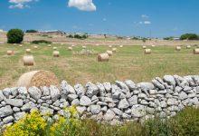 Sicilia Aree protette