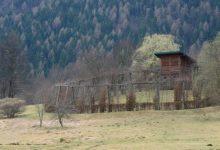 Photo of Lombardia, Roccoli chiusi e calendario riduttivo sospeso