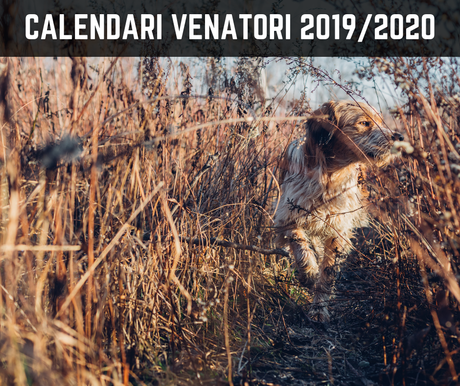 Calendario Venatorio Lombardia 2020 2020.Calendari Venatori Stagione 2019 2020 Iocaccio It