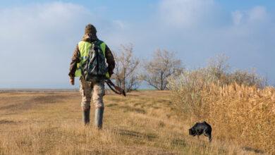 Photo of Lombardia, approvate modifiche alla legge sulla caccia. Ecco cosa cambia