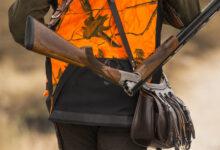 Photo of Lombardia, il Governo impugna le modifiche alla legge sulla caccia
