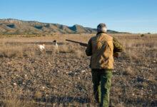 Photo of Caccia nelle regioni rosse e arancioni: la risposta del Governo