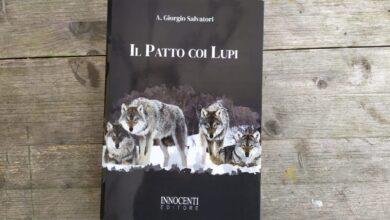 Photo of Il patto coi lupi, un libro per il cacciatore conservazionista